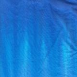 Degas Blue
