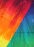 Rainbow Rich
